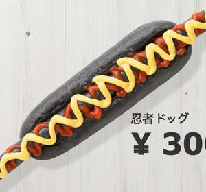 IKEA Japan's Ninja Dog
